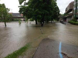 So zeigt sich das Hochwasser am Rand der Enns in Steyr